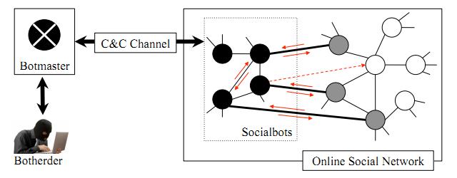Socialbot Network. Cada nodo representa un perfil. Los Socialbots en negro y los perfiles infiltrados en gris. Los ejes entre nodos representan conexiones sociales y las flechas interacciones.