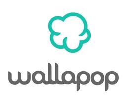 consumo colaborativo wallapop